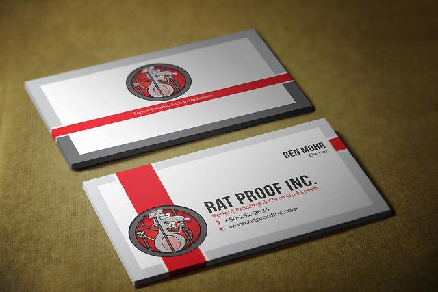 epic business cards bassingstoke united kingdom graphic