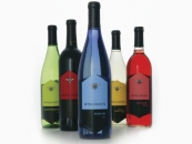 WineHaven Packaging System