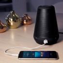 Echo Speaker pod